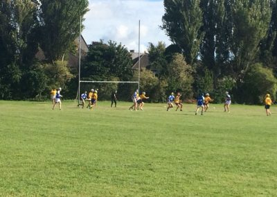 Image-of-hurling-match-